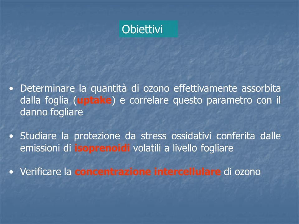 Obiettivi Determinare la quantità di ozono effettivamente assorbita dalla foglia (uptake) e correlare questo parametro con il danno fogliare.