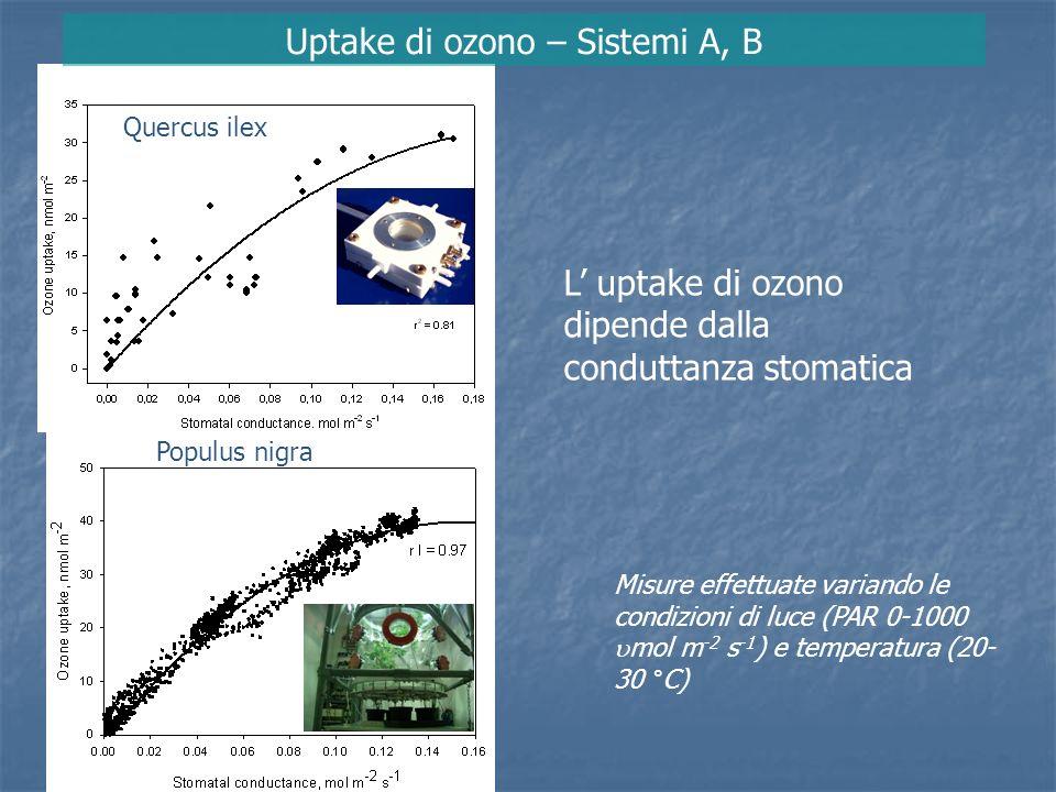 Uptake di ozono – Sistemi A, B