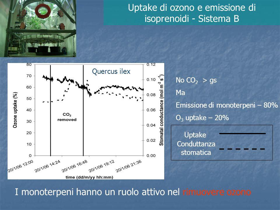 Uptake di ozono e emissione di isoprenoidi - Sistema B