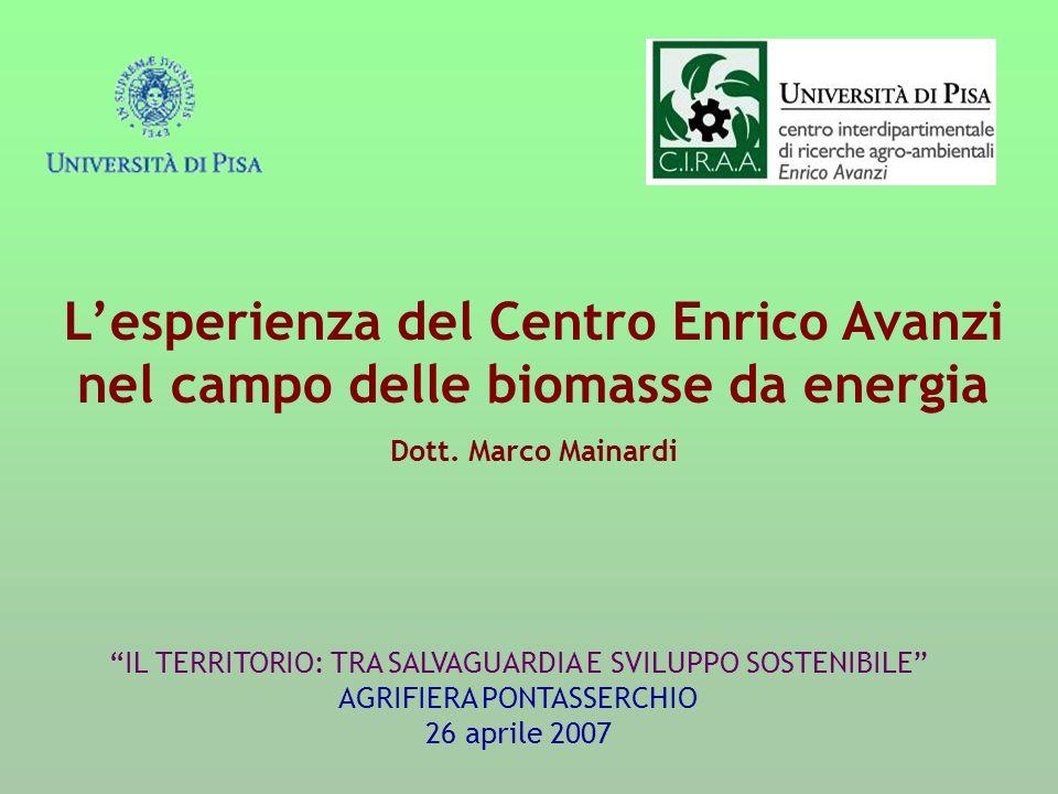 L'esperienza del Centro Enrico Avanzi nel campo delle biomasse da energia