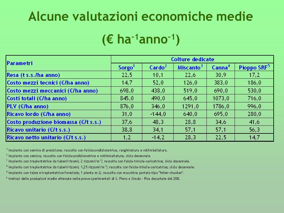 Alcune valutazioni economiche medie
