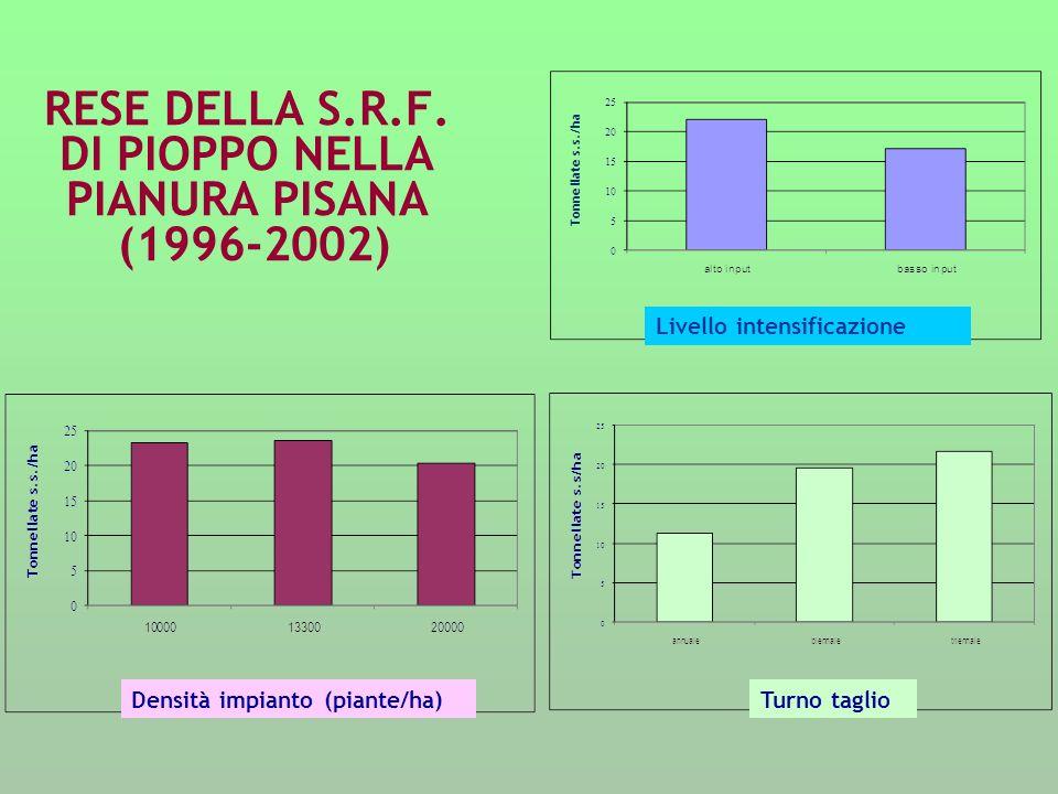 RESE DELLA S.R.F. DI PIOPPO NELLA PIANURA PISANA (1996-2002)