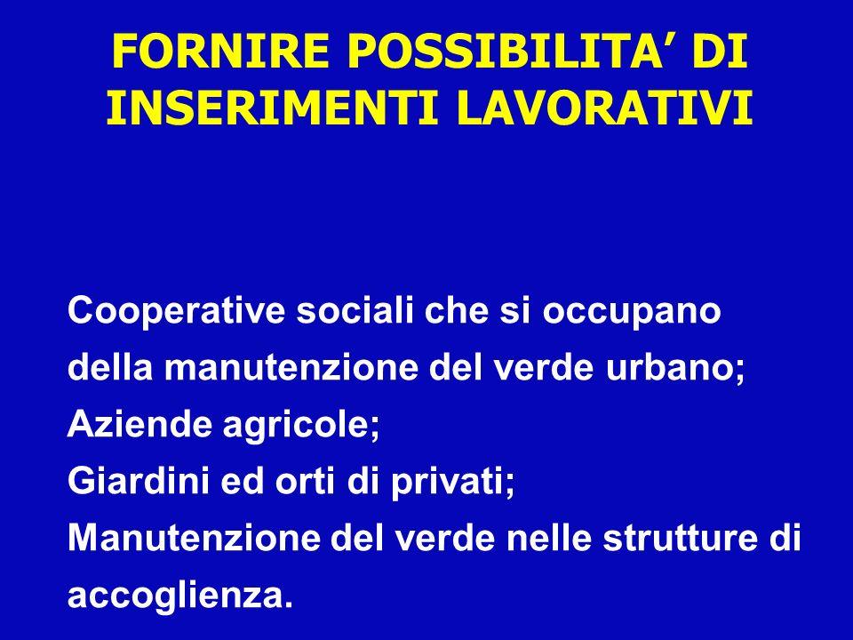 FORNIRE POSSIBILITA' DI INSERIMENTI LAVORATIVI