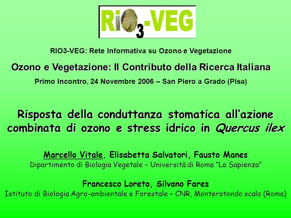RIO3-VEG: Rete Informativa su Ozono e Vegetazione
