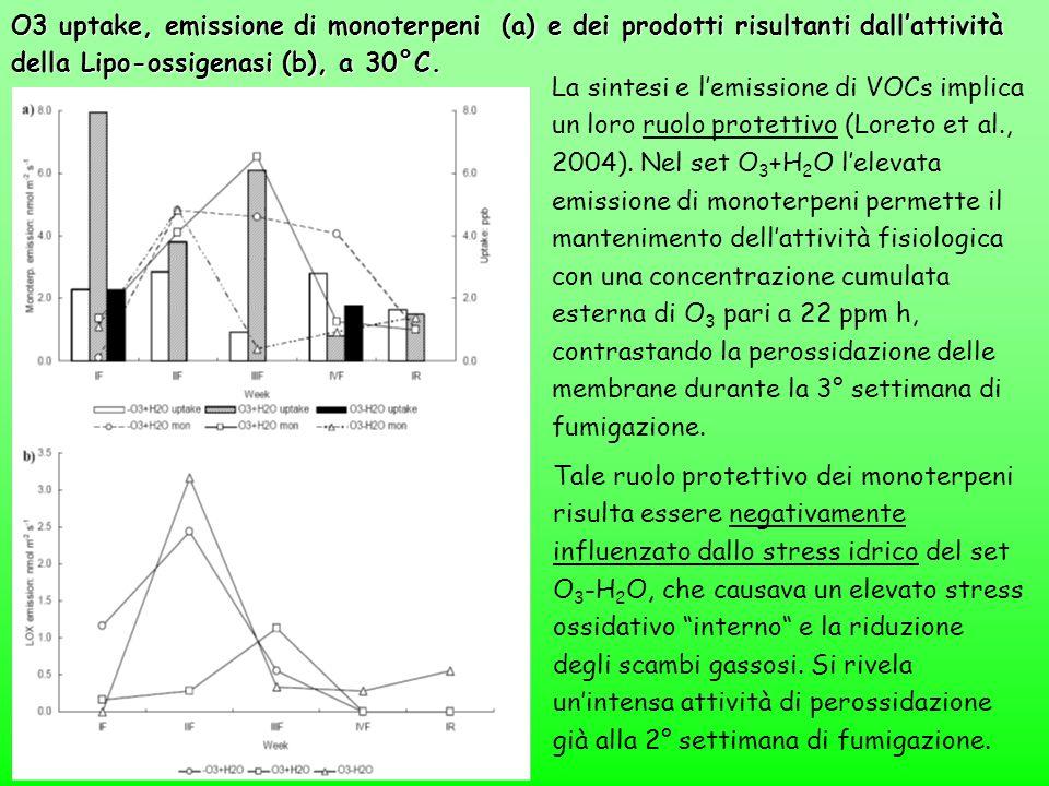 O3 uptake, emissione di monoterpeni (a) e dei prodotti risultanti dall'attività della Lipo-ossigenasi (b), a 30°C.
