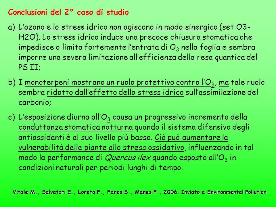 Conclusioni del 2° caso di studio