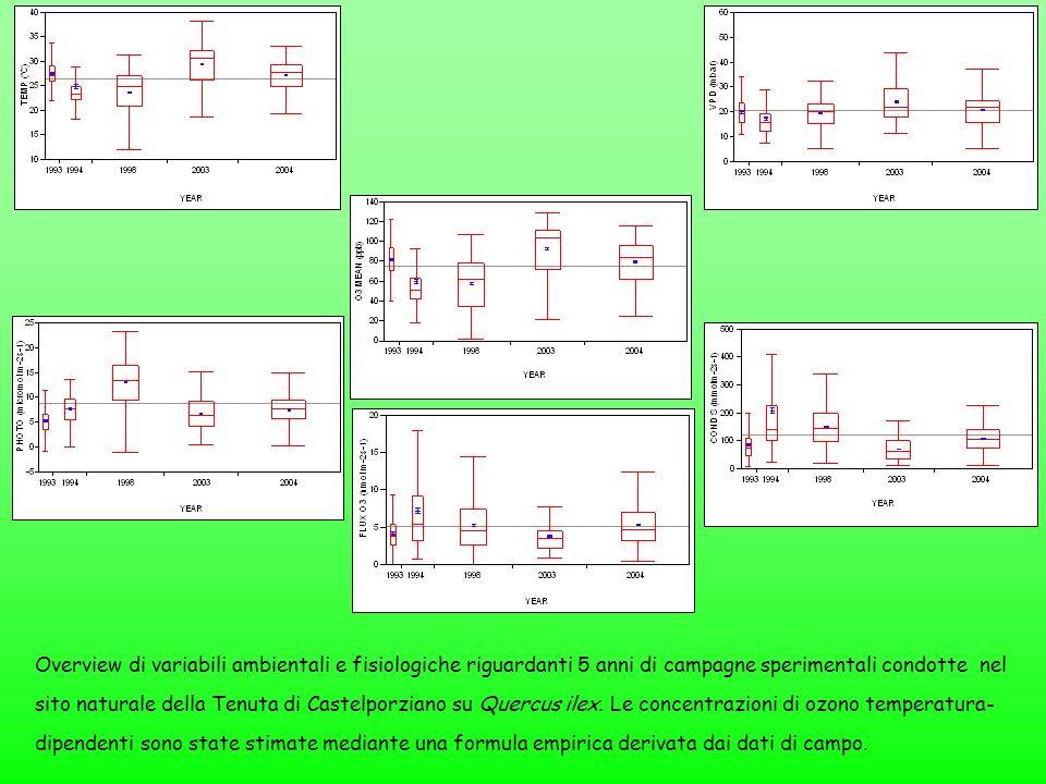 Overview di variabili ambientali e fisiologiche riguardanti 5 anni di campagne sperimentali condotte nel sito naturale della Tenuta di Castelporziano su Quercus ilex.