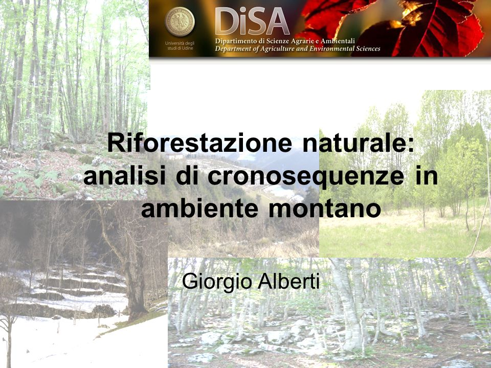Riforestazione naturale: analisi di cronosequenze in ambiente montano