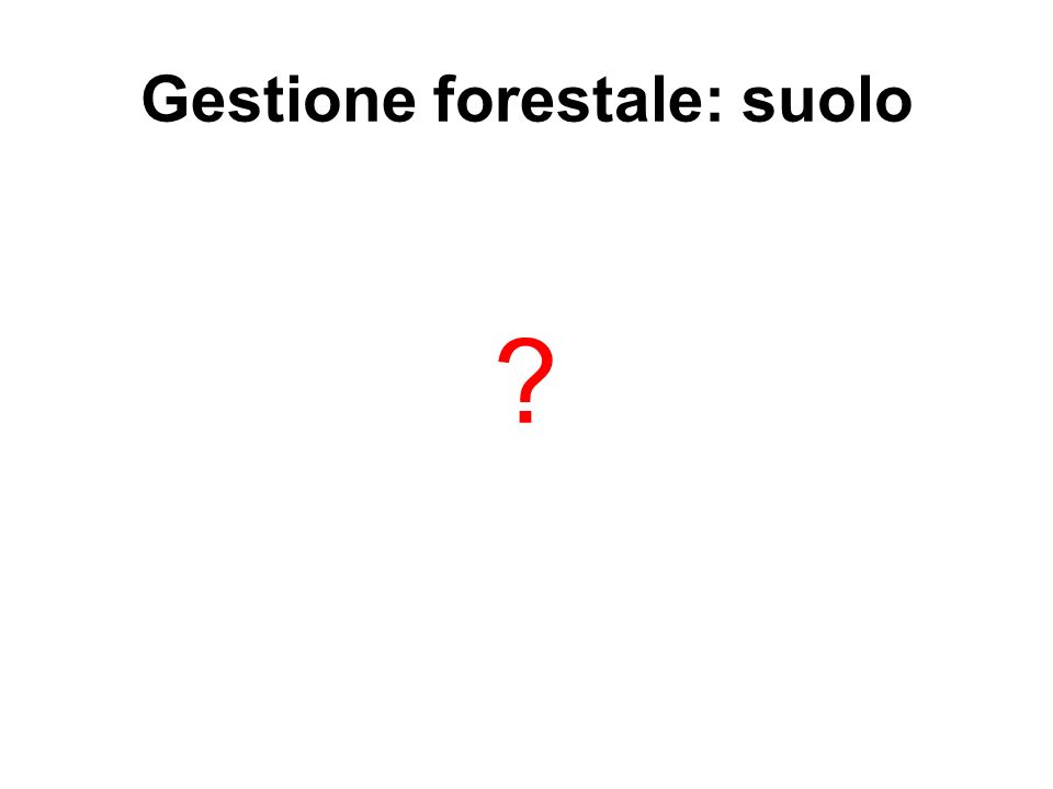 Gestione forestale: suolo