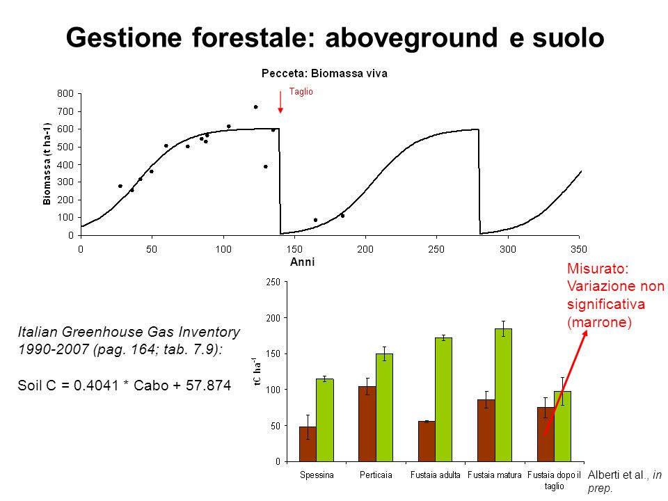 Gestione forestale: aboveground e suolo