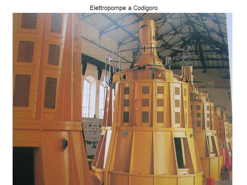 Elettropompe a Codigoro
