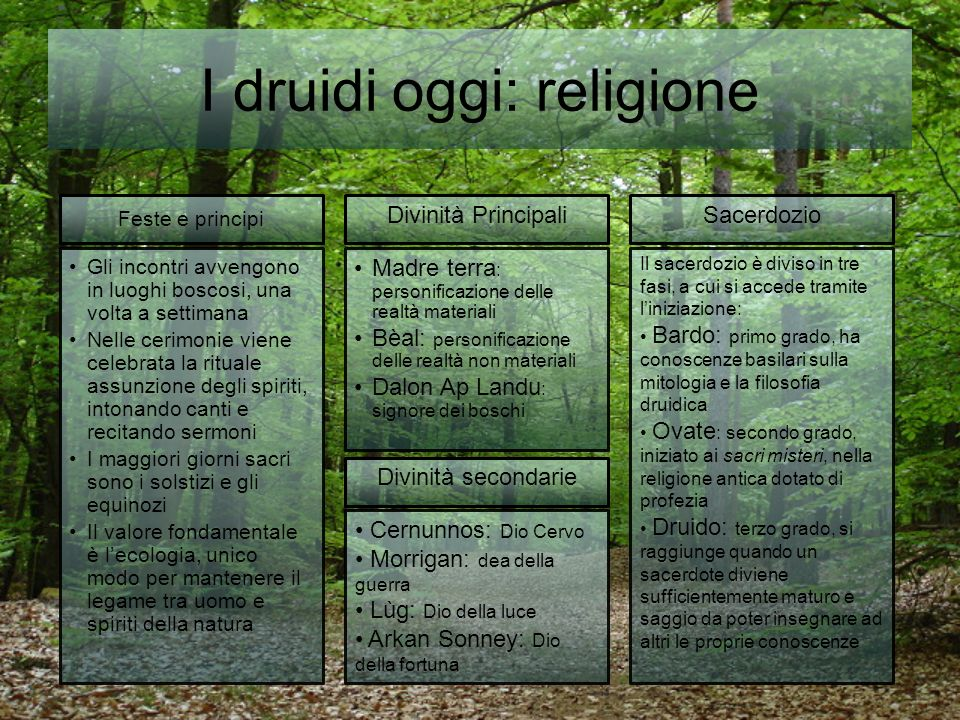 I druidi oggi: religione