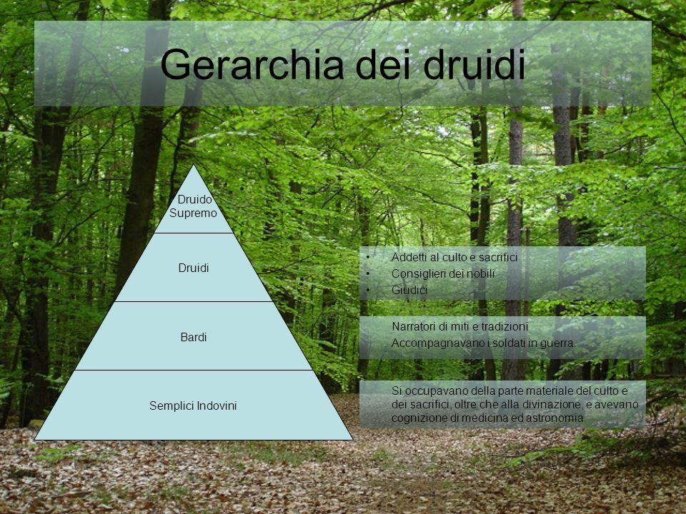 Gerarchia dei druidi Addetti al culto e sacrifici