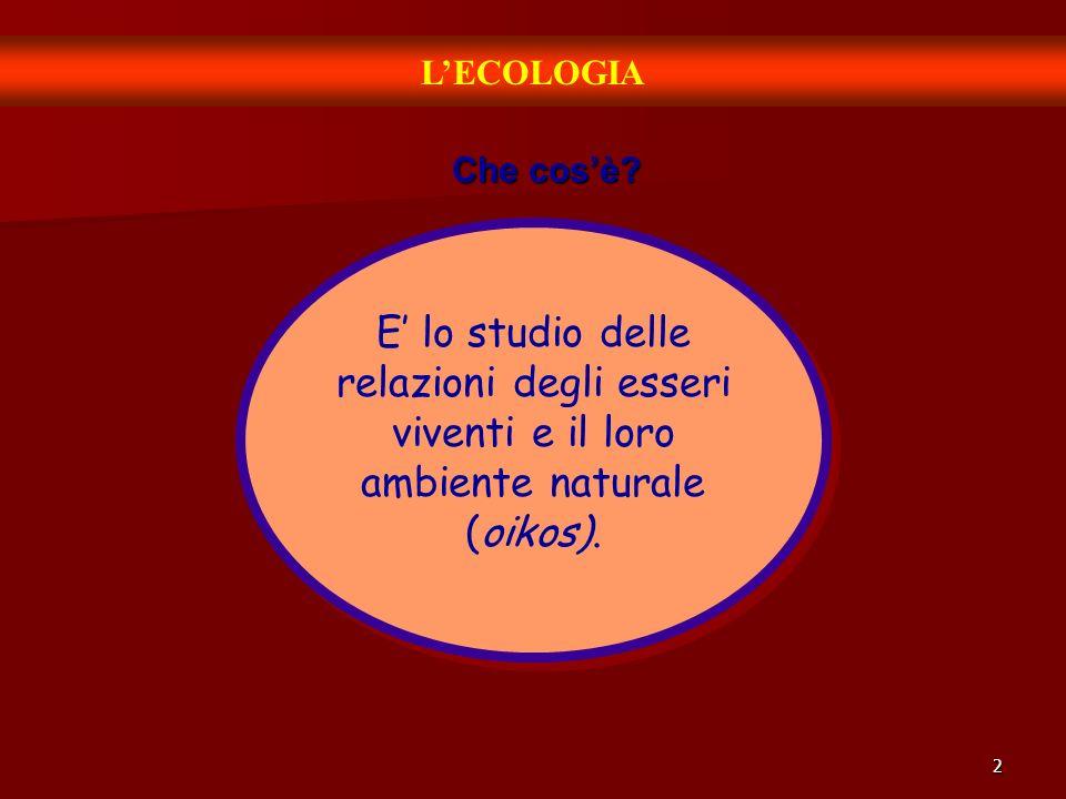 L'ECOLOGIA Che cos'è.