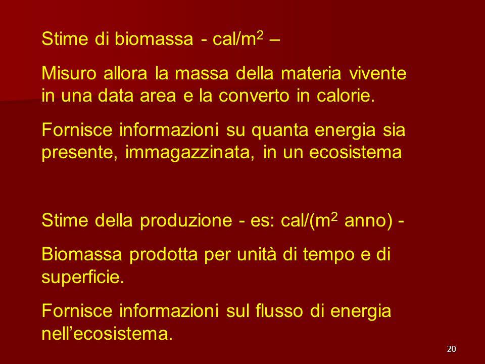 Stime di biomassa - cal/m2 –