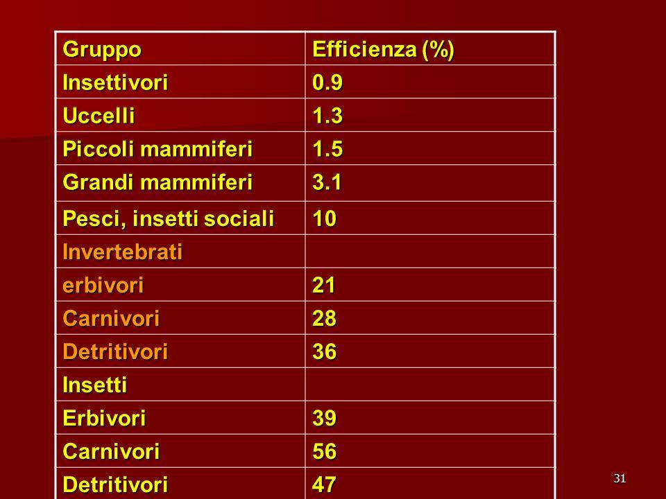 Gruppo Efficienza (%) Insettivori. 0.9. Uccelli. 1.3. Piccoli mammiferi. 1.5. Grandi mammiferi.