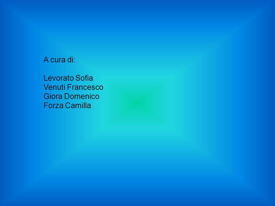 A cura di: Levorato Sofia Venuti Francesco Giora Domenico Forza Camilla