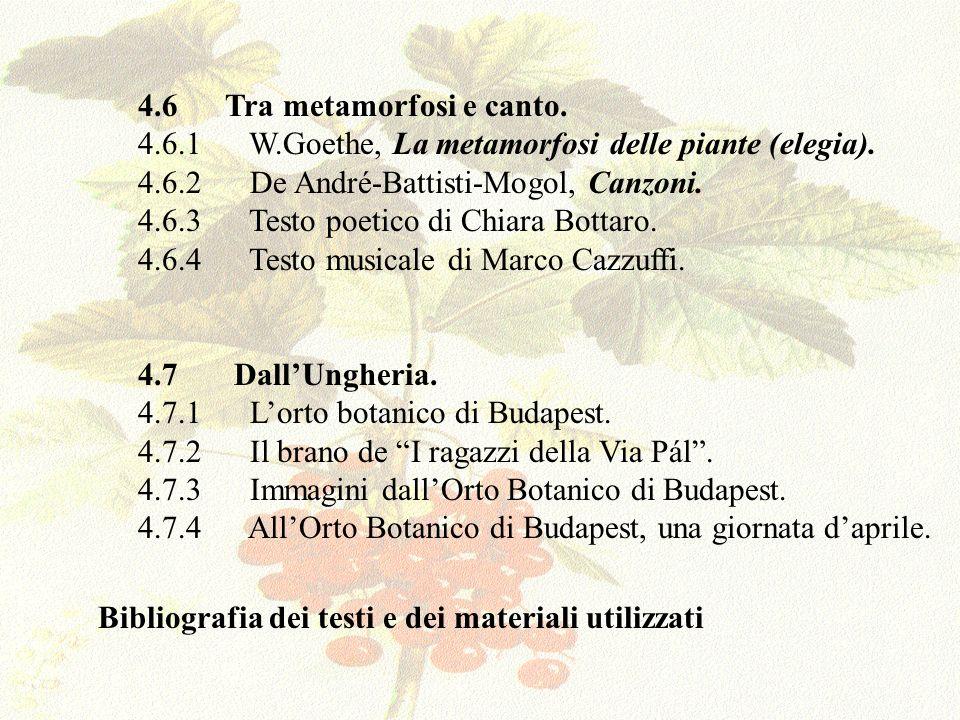 4.6 Tra metamorfosi e canto.
