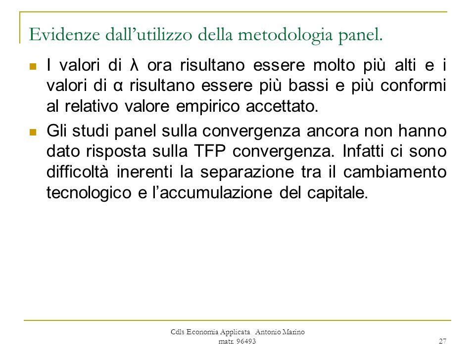 Evidenze dall'utilizzo della metodologia panel.
