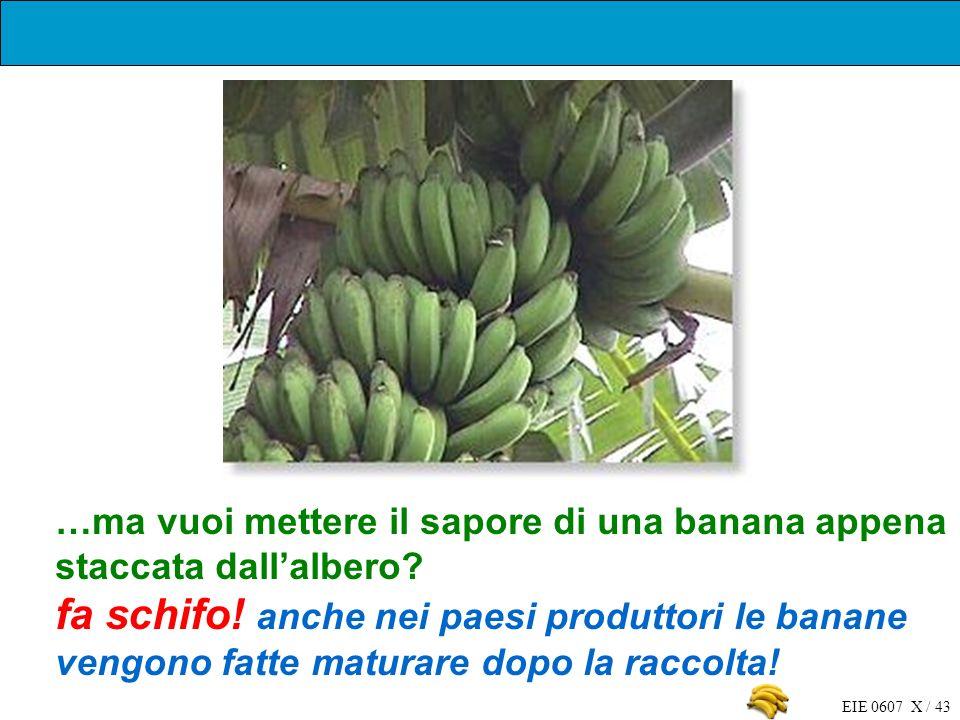 …ma vuoi mettere il sapore di una banana appena staccata dall'albero