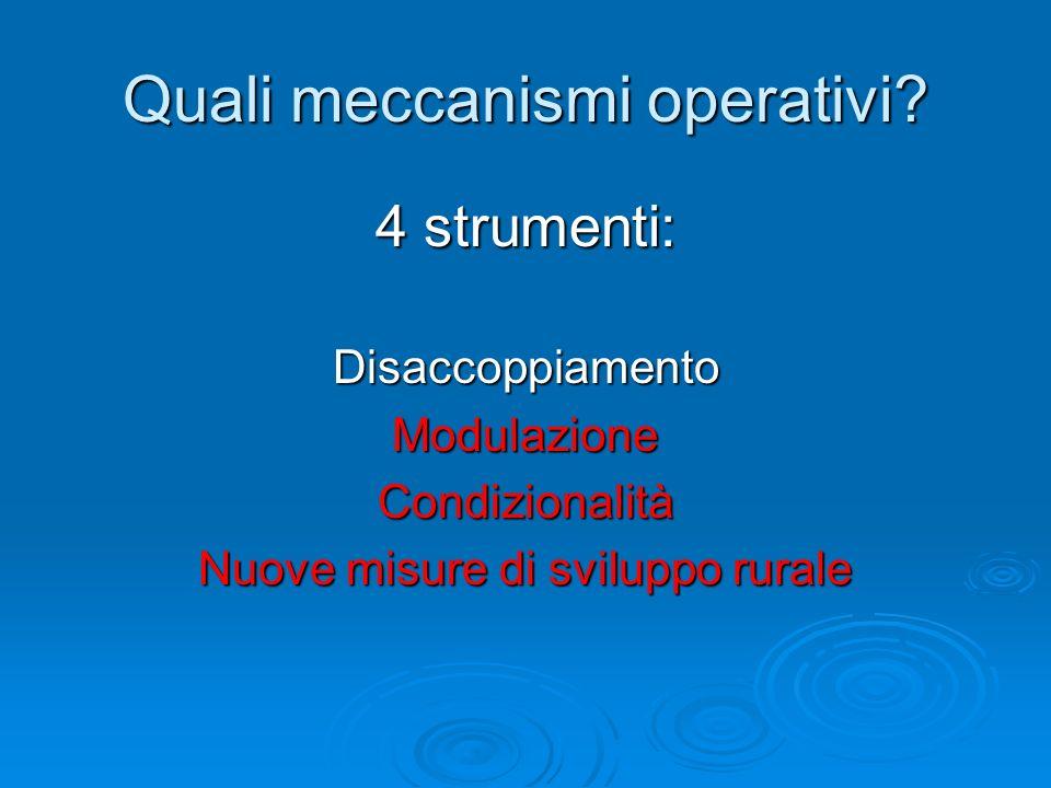 Quali meccanismi operativi