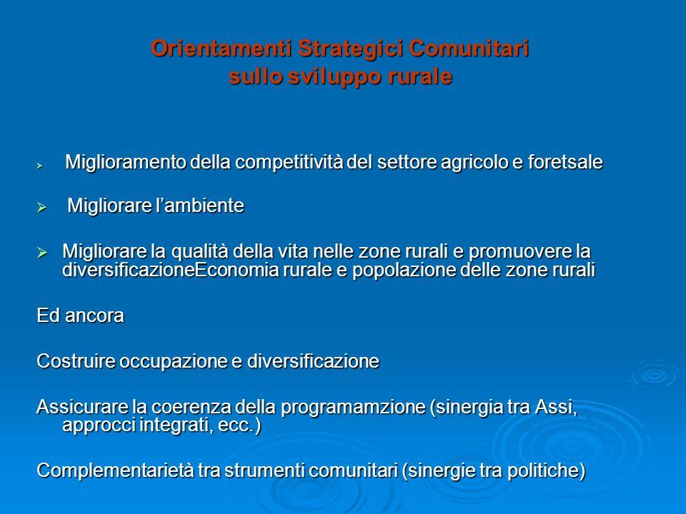 Orientamenti Strategici Comunitari