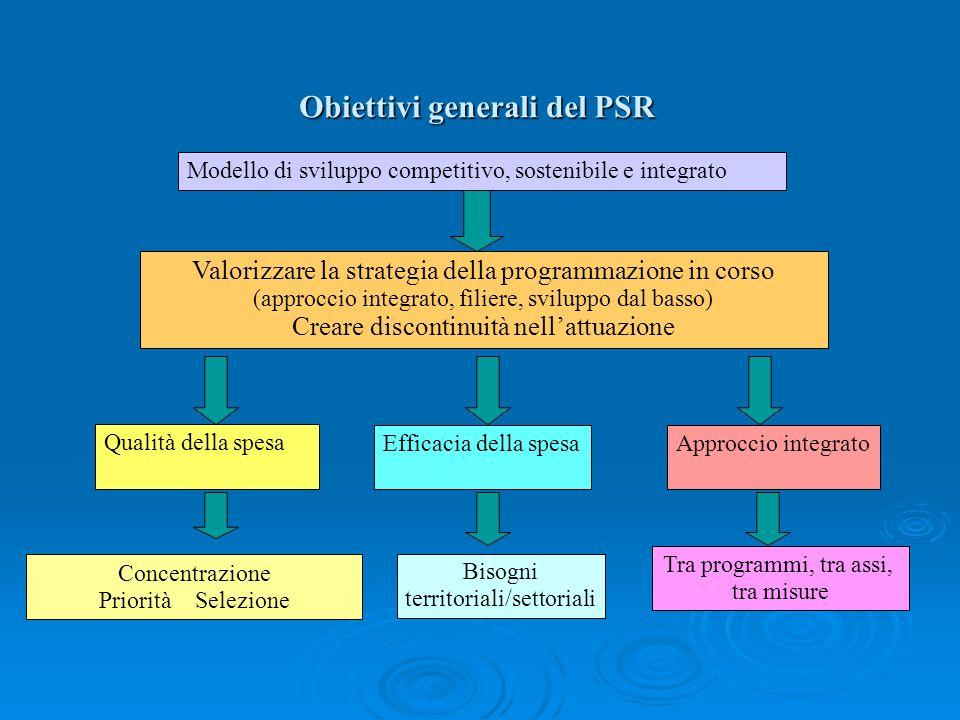Obiettivi generali del PSR