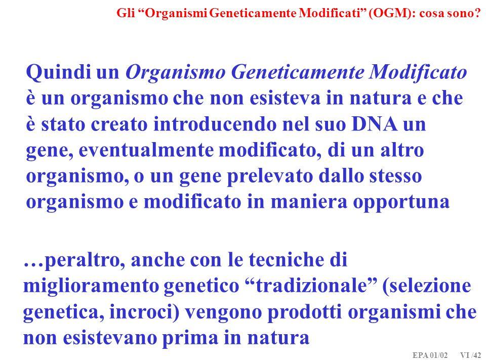 Gli Organismi Geneticamente Modificati (OGM): cosa sono