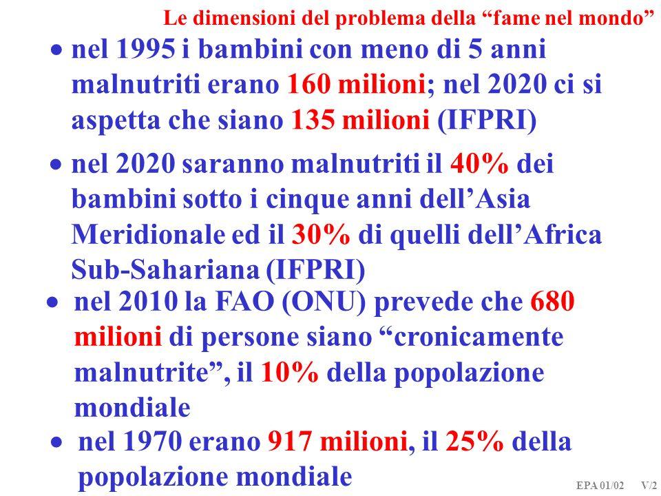 Le dimensioni del problema della fame nel mondo