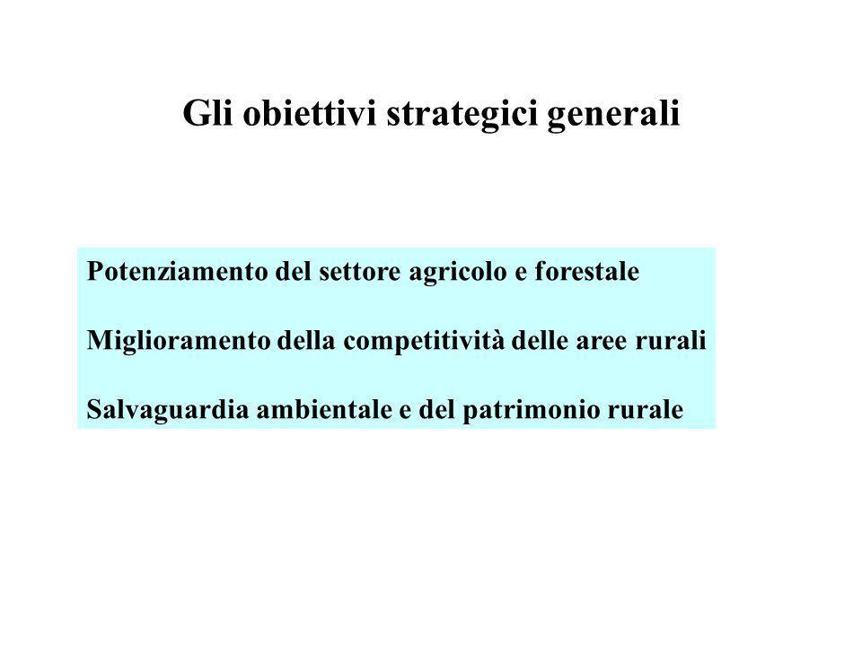 Gli obiettivi strategici generali