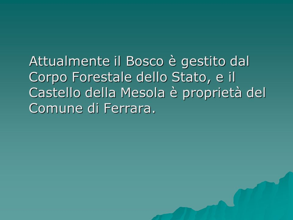 Attualmente il Bosco è gestito dal Corpo Forestale dello Stato, e il Castello della Mesola è proprietà del Comune di Ferrara.