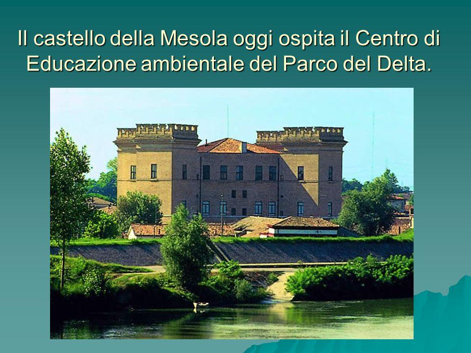 Il castello della Mesola oggi ospita il Centro di Educazione ambientale del Parco del Delta.