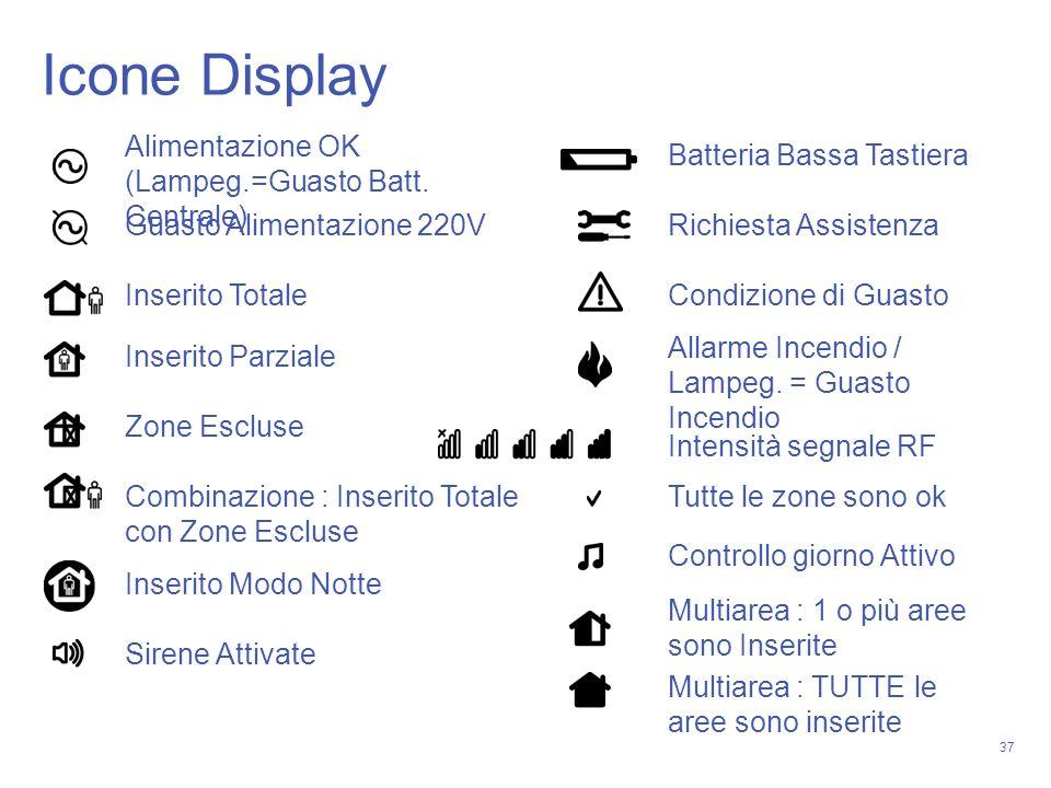 Icone Display Alimentazione OK (Lampeg.=Guasto Batt. Centrale)
