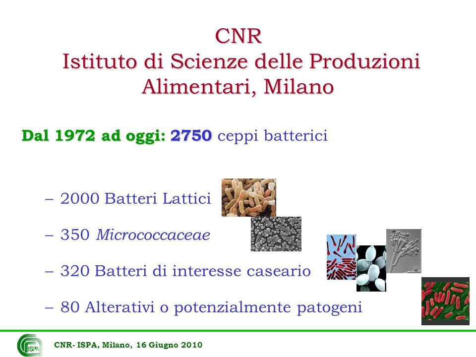 CNR Istituto di Scienze delle Produzioni Alimentari, Milano