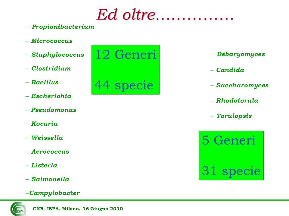 Ed oltre…………… 12 Generi 44 specie 5 Generi 31 specie Propionibacterium