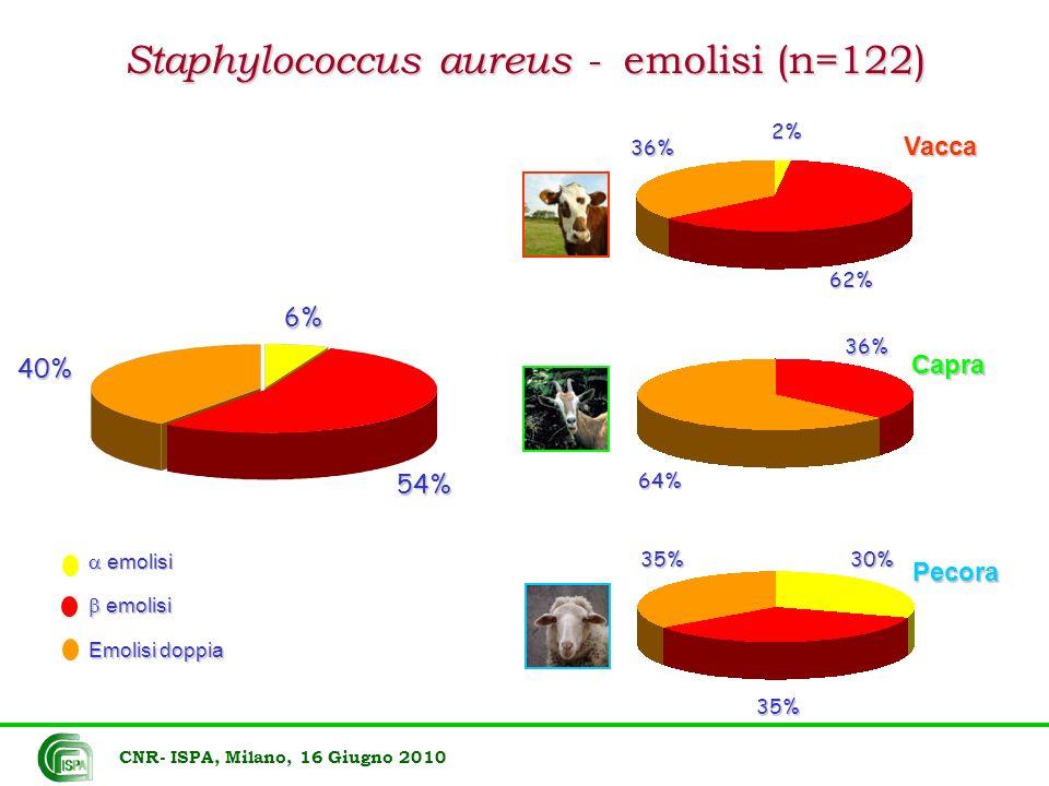 Staphylococcus aureus - emolisi (n=122)