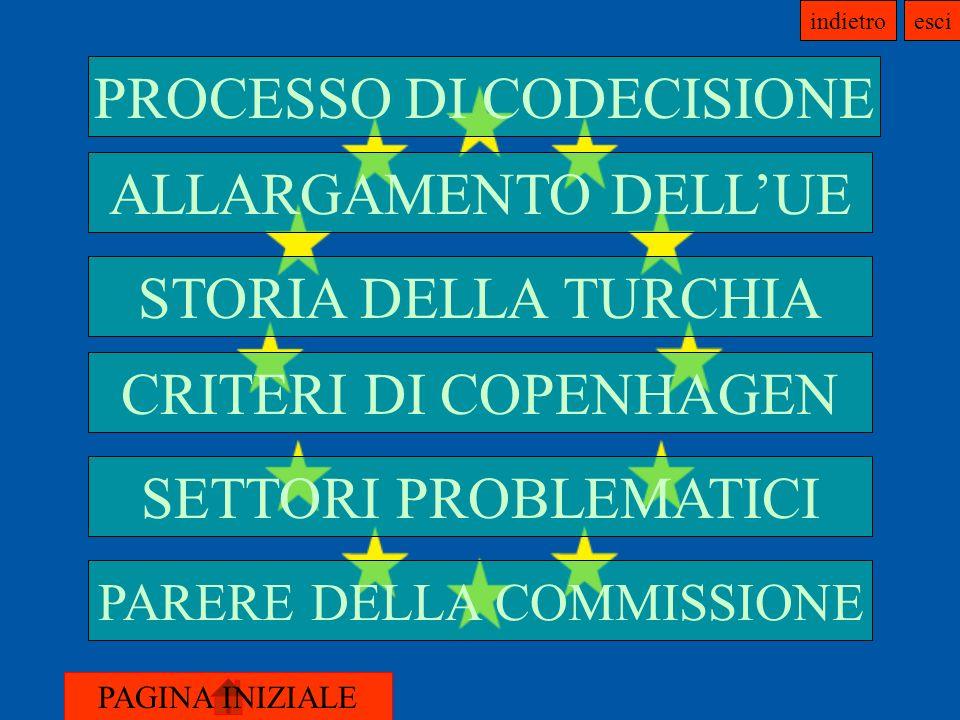 PROCESSO DI CODECISIONE