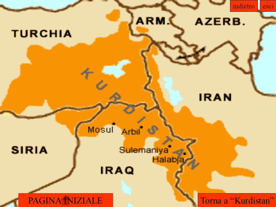 Torna a Kurdistan