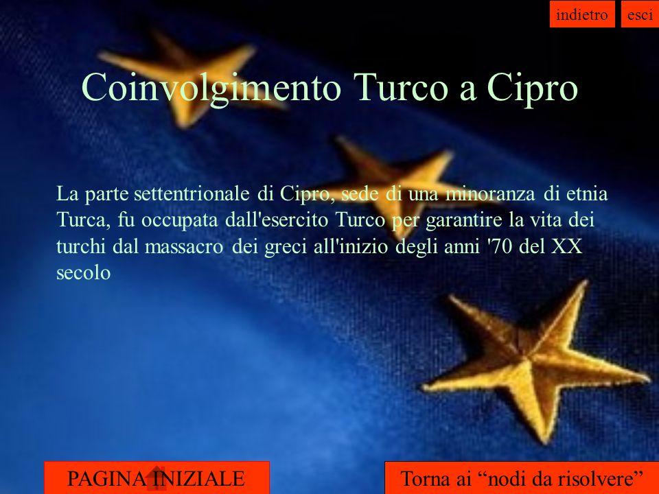 Coinvolgimento Turco a Cipro