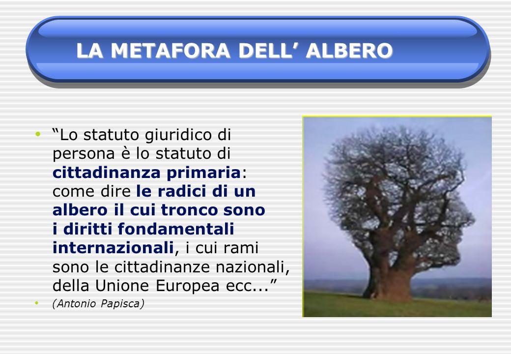 LA METAFORA DELL' ALBERO