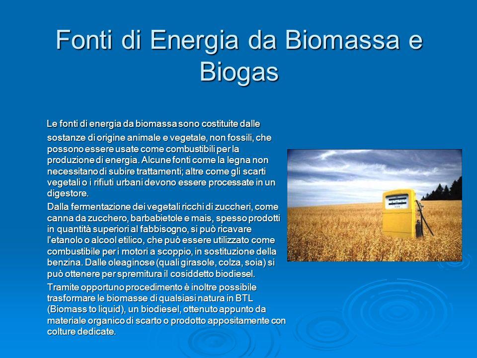 Fonti di Energia da Biomassa e Biogas