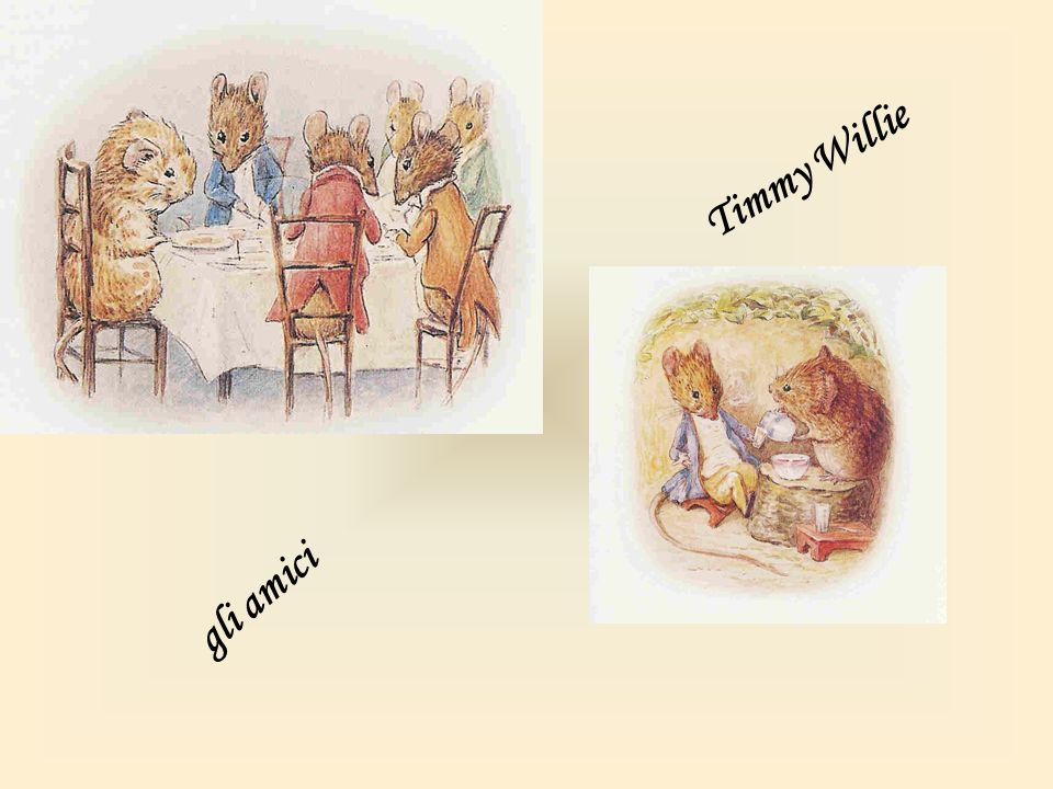 Timmy Willie gli amici