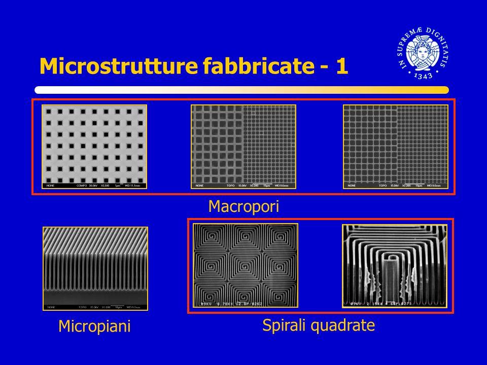Microstrutture fabbricate - 1