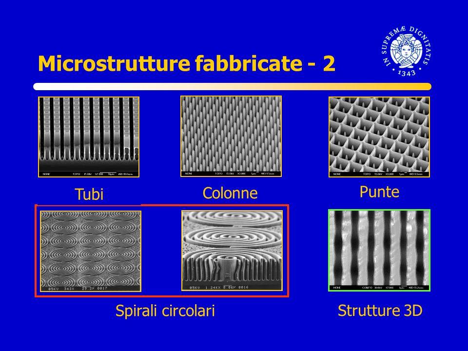 Microstrutture fabbricate - 2