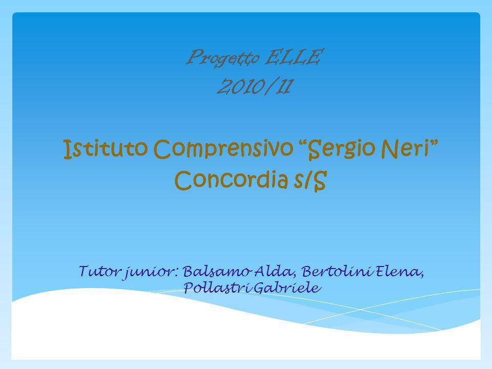 Istituto Comprensivo Sergio Neri