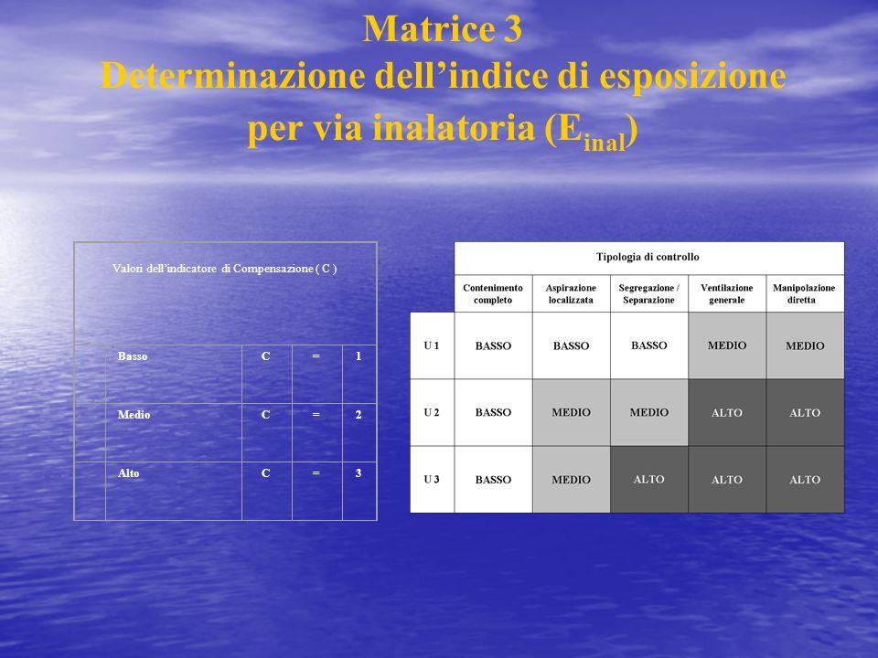 Determinazione dell'indice di esposizione per via inalatoria (Einal)