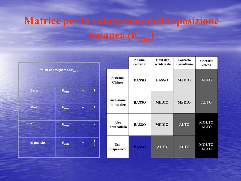 Matrice per la valutazione dell'esposizione cutanea (Ecute)