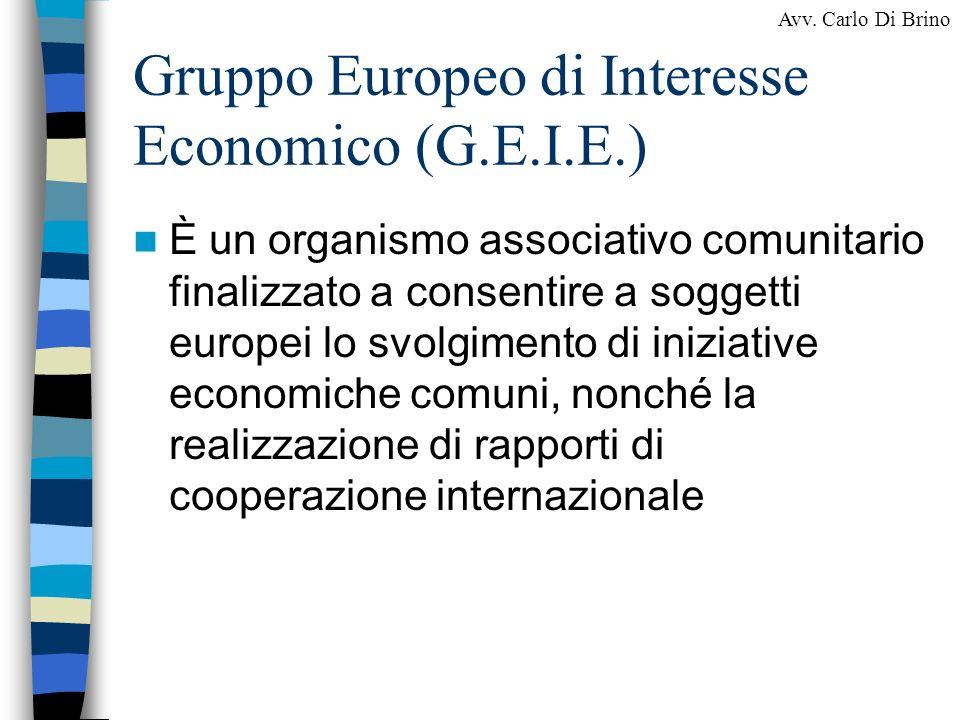Gruppo Europeo di Interesse Economico (G.E.I.E.)