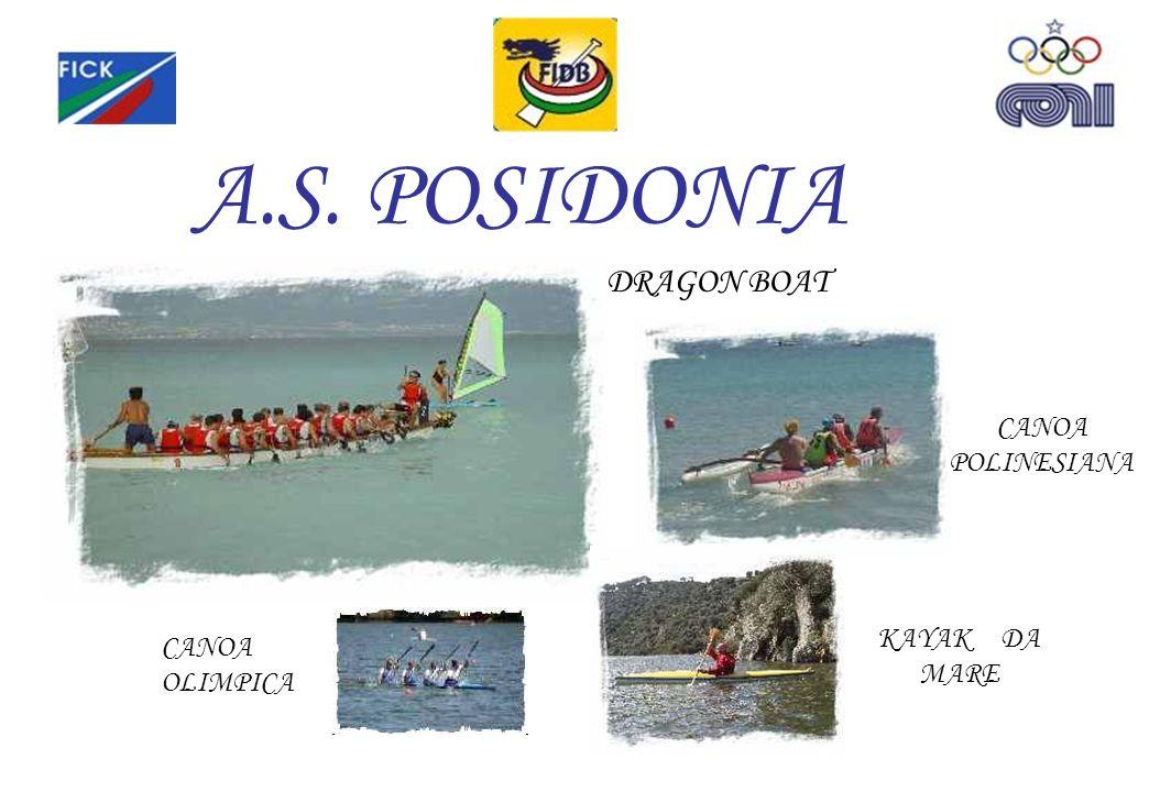 A.S. POSIDONIA DRAGON BOAT CANOA POLINESIANA KAYAK DA MARE