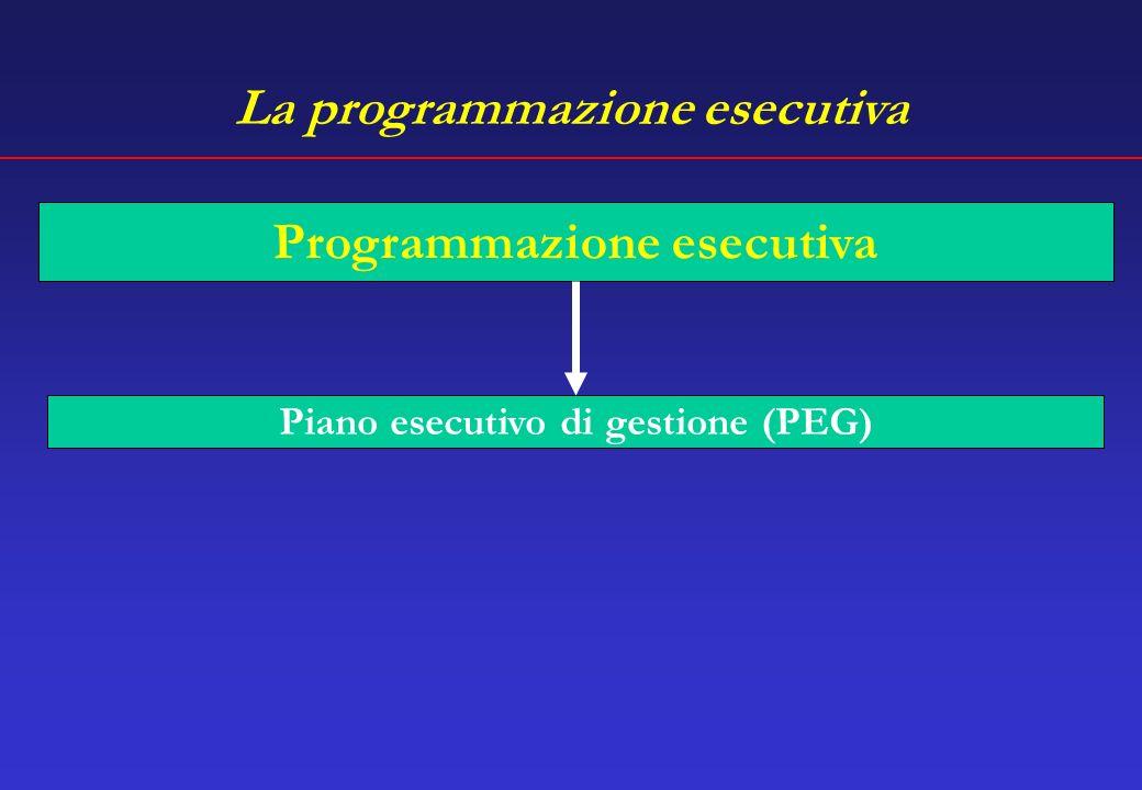 La programmazione esecutiva Programmazione esecutiva